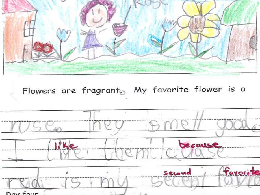 Voices From The Classroom Kindergarten Writing